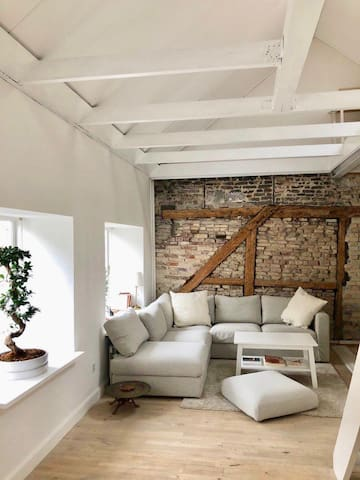 Scandinavian loft in the City Center