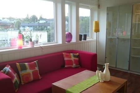 Clean, modern, spacious apartment - Trondheim