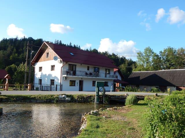 Guest House Končar Room 3