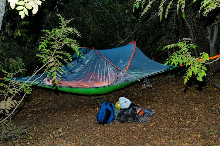 Tree Tent Camping Vilches