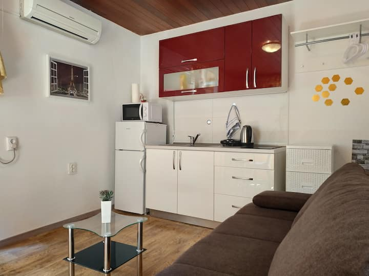 Authentic dalmatian studio apartment # 1