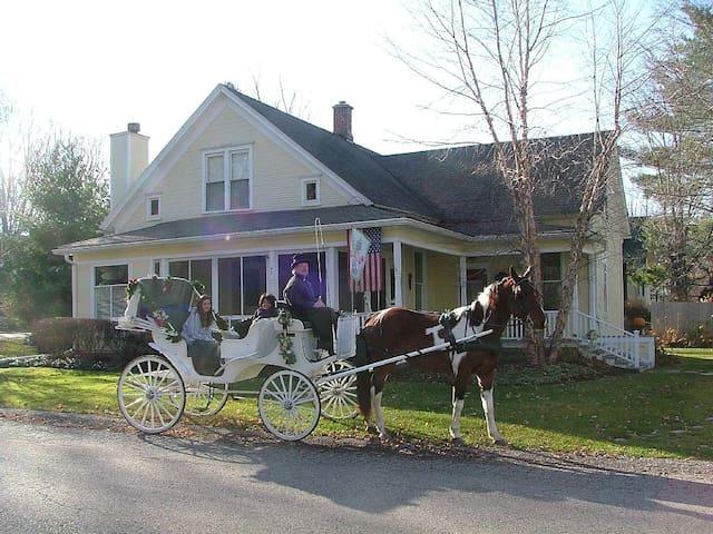 Vintage Splendor Historic - Douglas - Huis