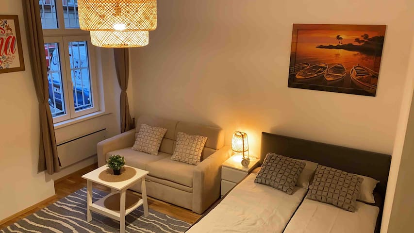 Apartment near City Center 1Min U-Bahn Volksoper