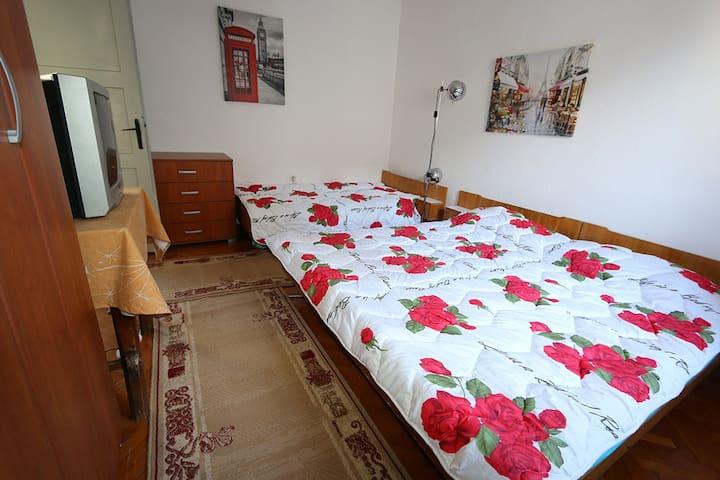 Apartments Topla Centar A