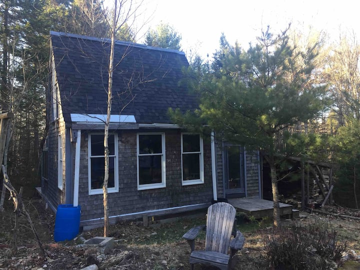 Black Woods  Homestead Cabin