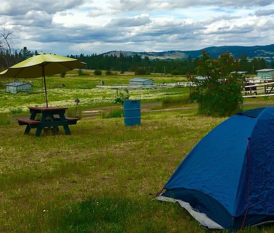 Authentic Barn Campsite #2