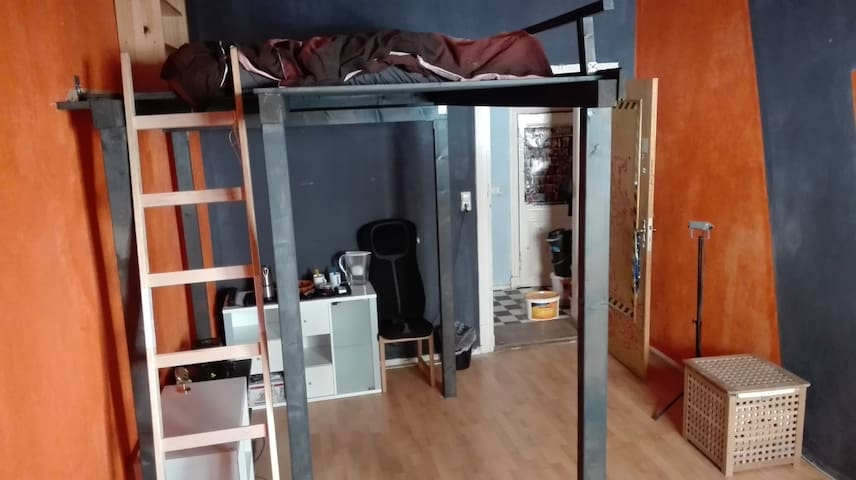 25 square metre coloured room with a loft bed