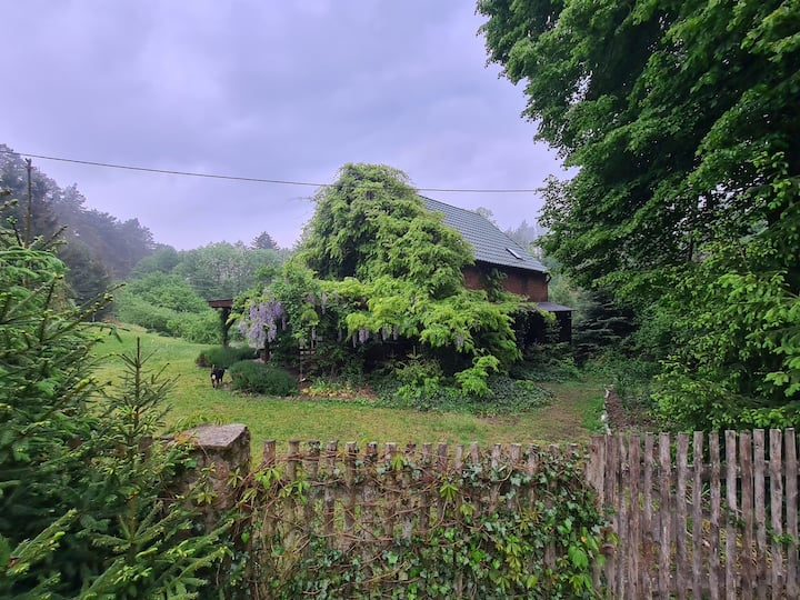 Stary Mlyn w lesie, Alte Mühle im Wald, Forsthaus,