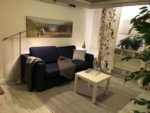 Basement spare room with sofa bed and office workspace.