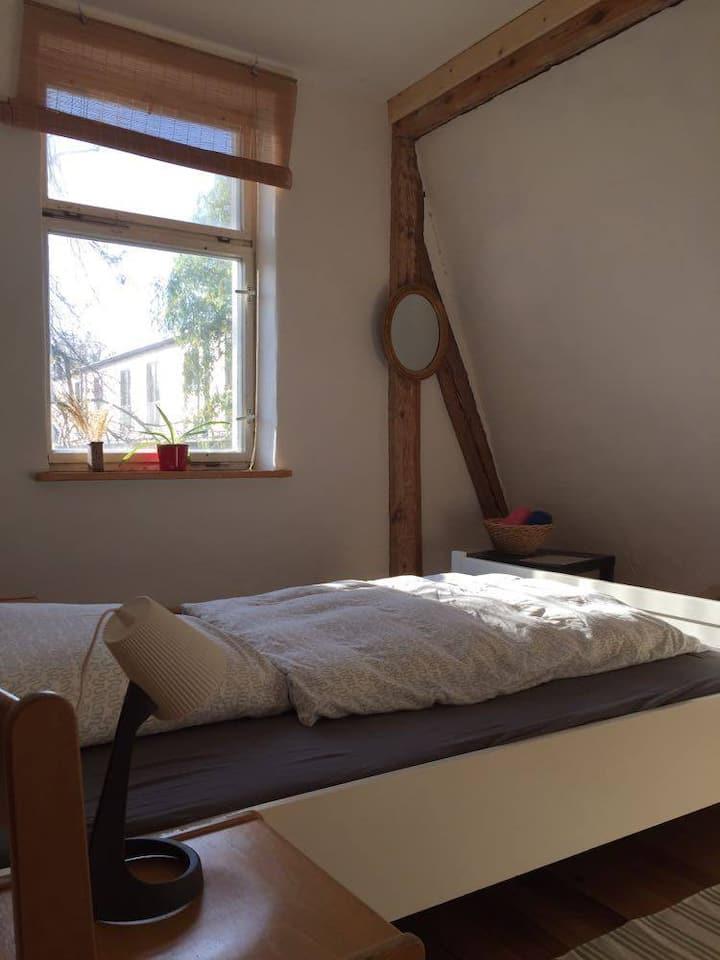Ruhiges Zimmer mit Lindenblick am Elberadweg