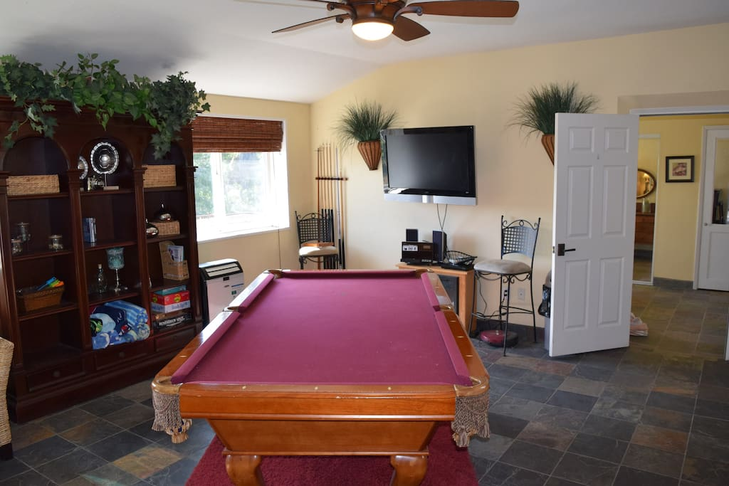 Pool table/family room