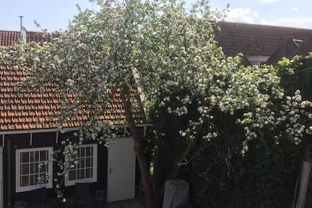 Lovely little cottage near Amsterdam