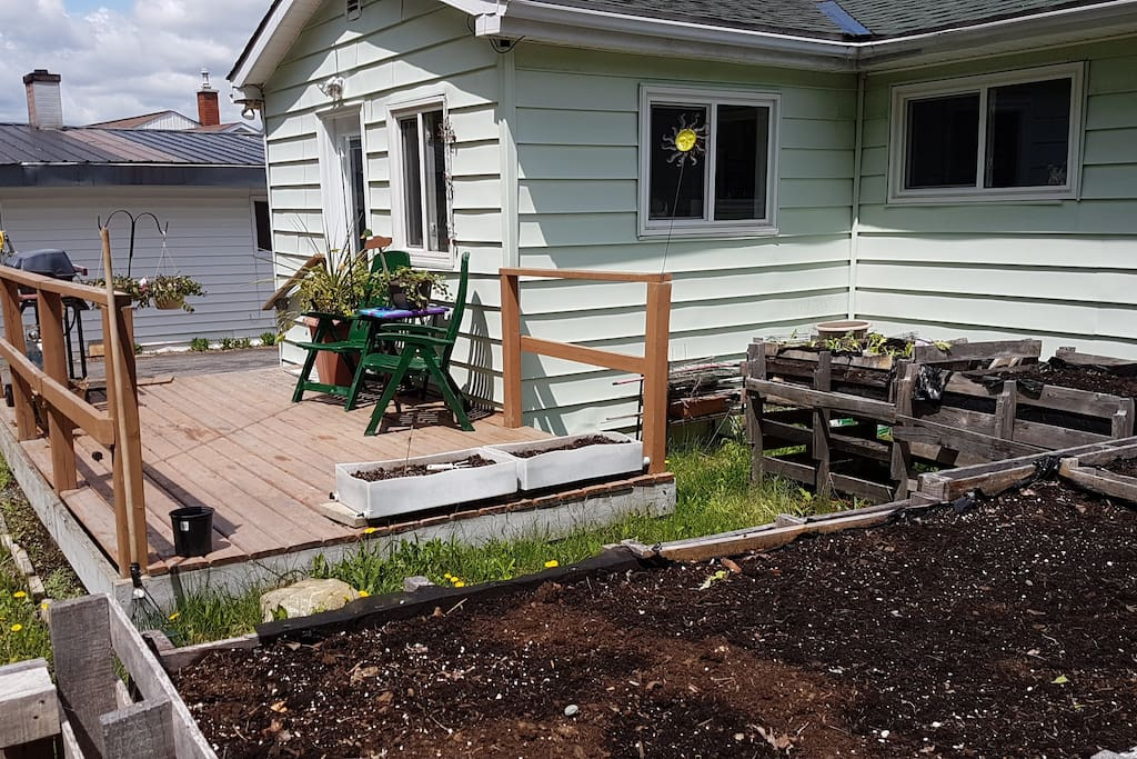 Back of house with porch, raised garden beds and BBQ.