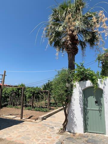 Vegan Cretan Villa with own Green Garden & Yard