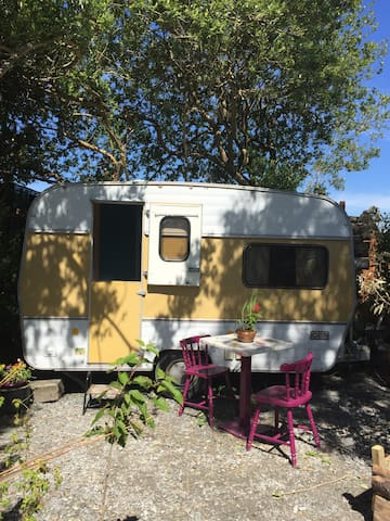 Yellow flower retro  caravan on Valentia Island