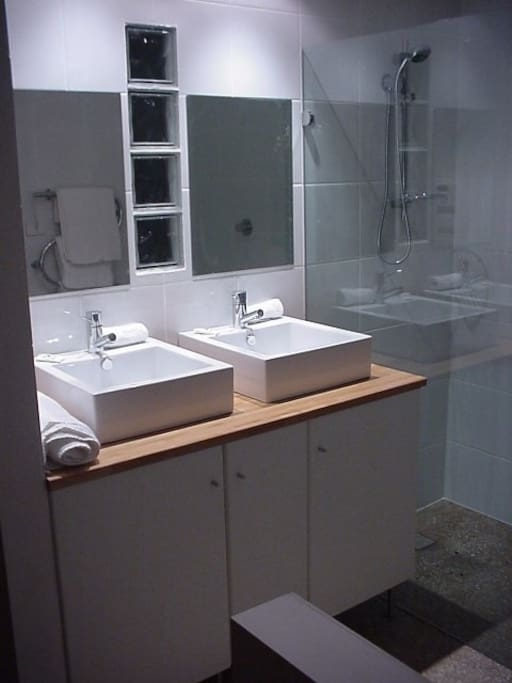 Twin basins in Bathroom