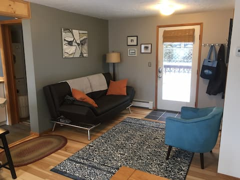 Bright Spacious Downtown Apartment Newly remodeled