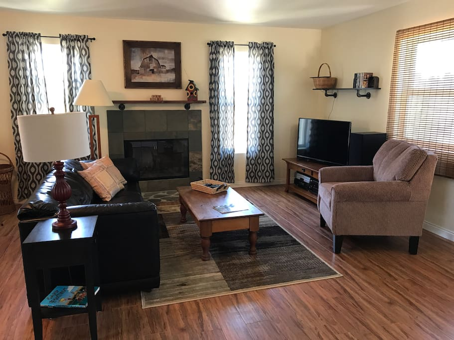 Comfortable living room with Roku T.V.