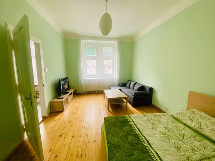 Útulný pohodlný byt na Praze 7 ideální pro pár