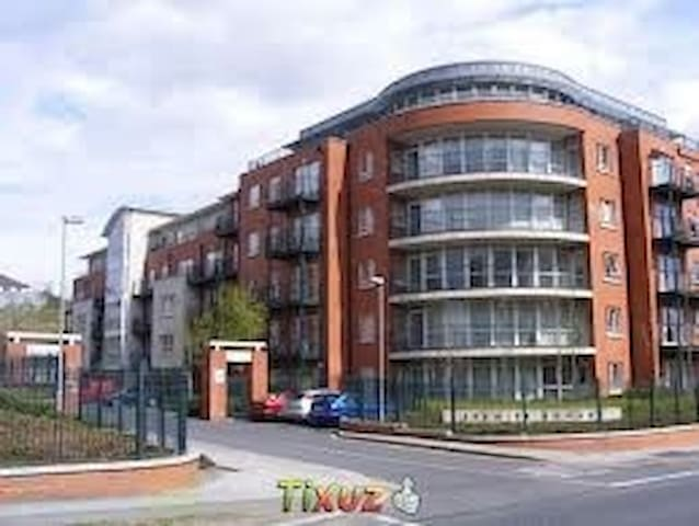 Lovely double room near Botanic Garden - Dublin - Wohnung