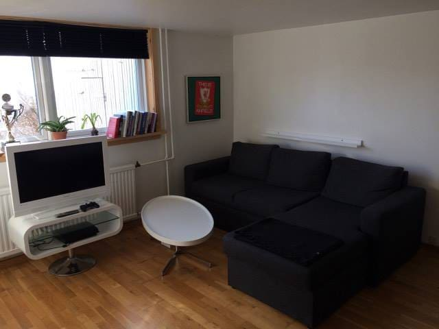 Cosy studio apartment near the center of Tórshavn - Tórshavn - Leilighet