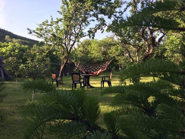 Guesthouse in Sagarejo