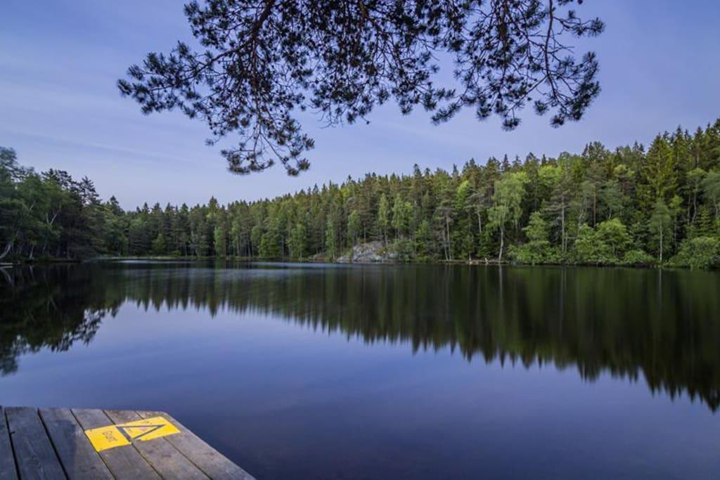 5 min walk to this lake