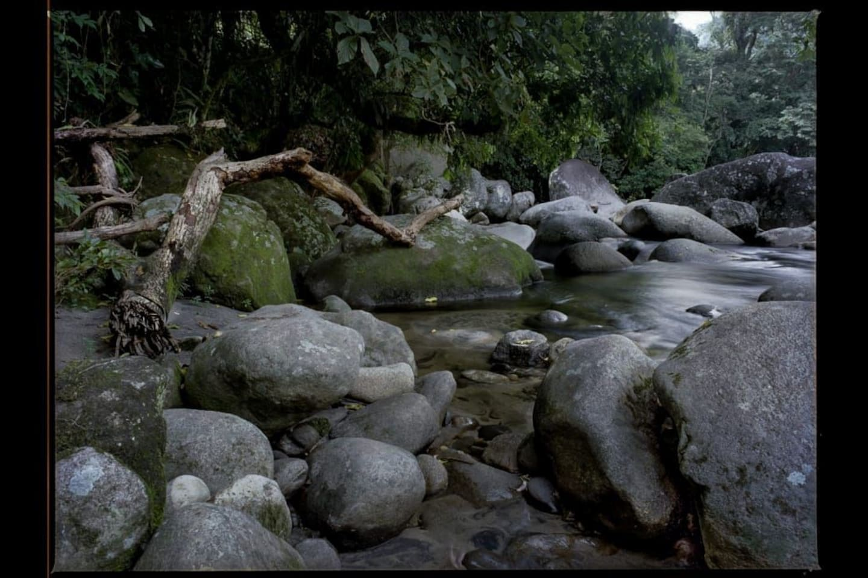 Rio Soberbo, direto do Parque Nacional da Serra dos Órgãos, águas cristalinas e poços maravilhosos.