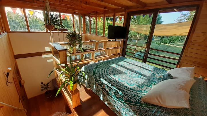 Peace and Nature: Wooden Design Cabin w/ Eco-Pool