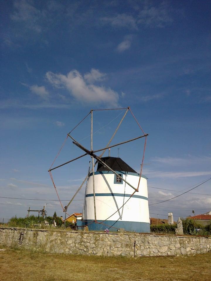 Moinho do vento - T1