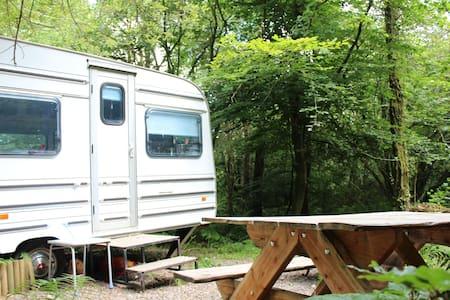 Bluebell - Woodland Gypsy Caravan - Devon