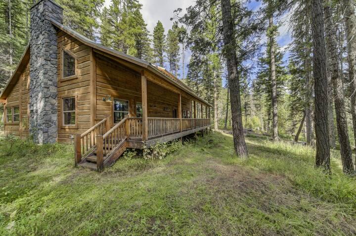 Lark Trail Cabin Mountain Getaway near Tamarack Resort