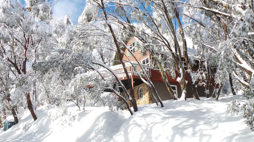Private Ski Chalet  (5 night min) - Falls Creek - Huis