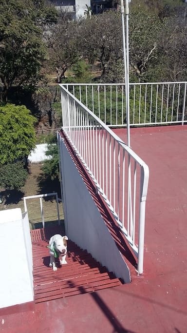 Entrada desde calle a planta alta, se deben bajar escaleras para entrar al Bungalow