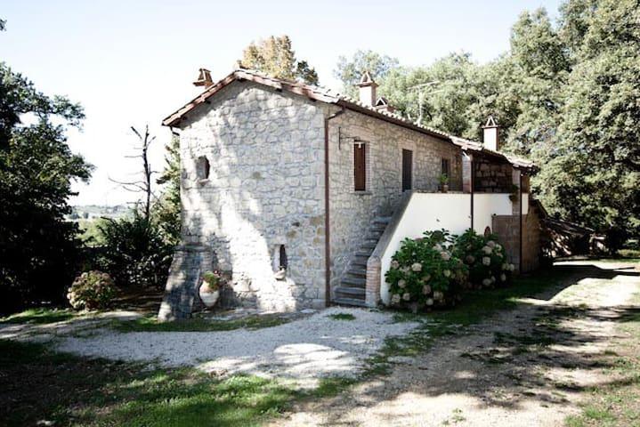 Farmhouse il Fondaccio - Montefiascone - House