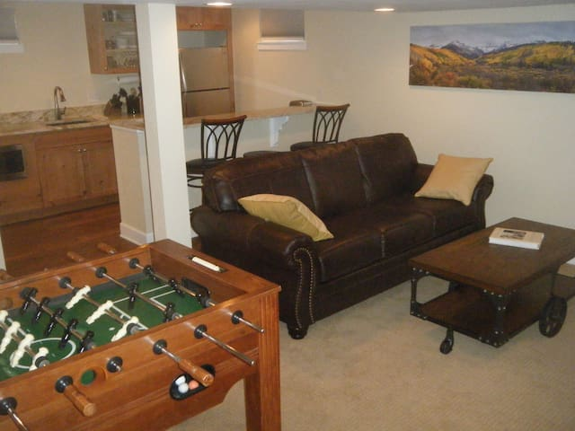 Newly Renovated 1BR Apt. Central locale, Near DU. - Denver - Apartment
