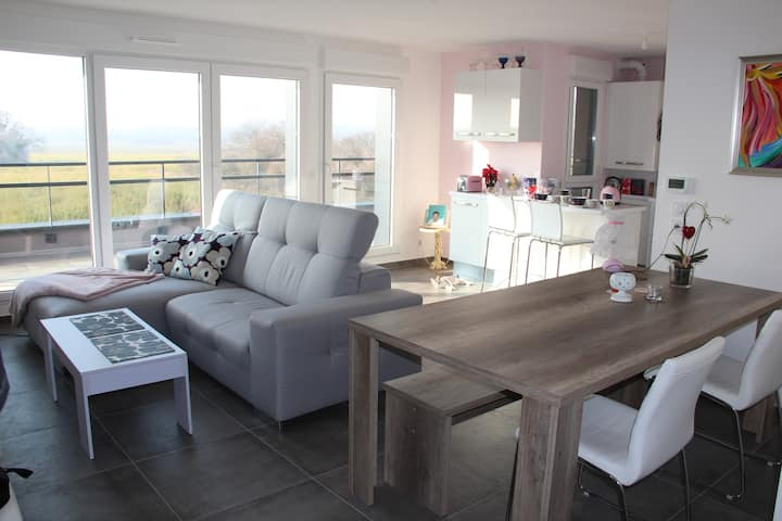 New, spacious penthouse flat for Basel World
