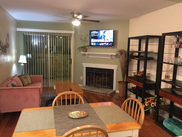 Spacious  Clear Lake apartment near Kemah/NASA