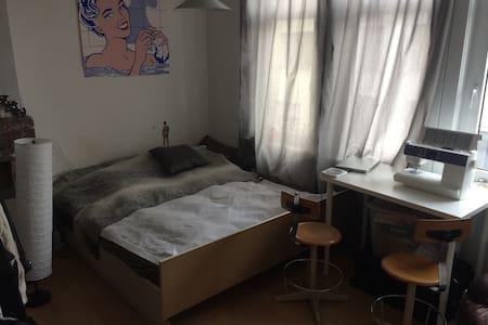 Large double bedroom in Antwerp - Antwerpen