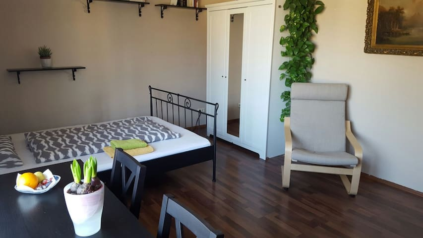 Räumiges Privatzimmer, zentrumnah - Bonn - Apartment