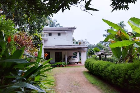 Paithal Valley Plantation Retreat - Kudiyanmala