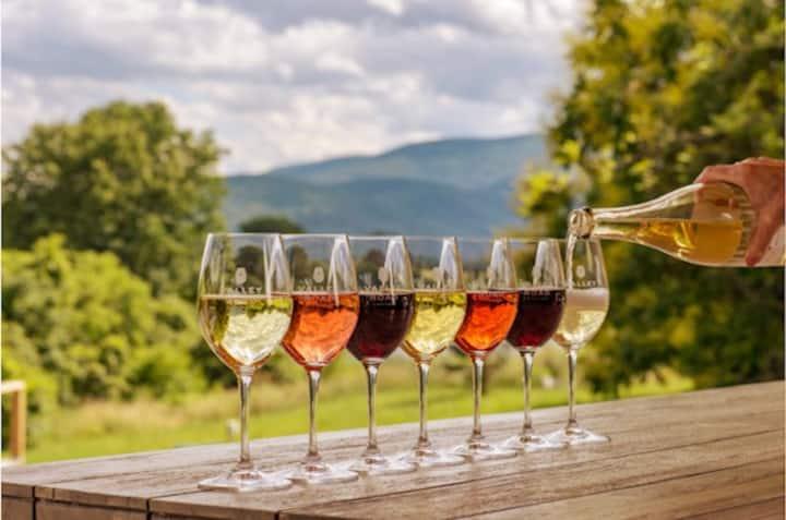 Fun Getaway For Group In Wine Country-Santa Rosa