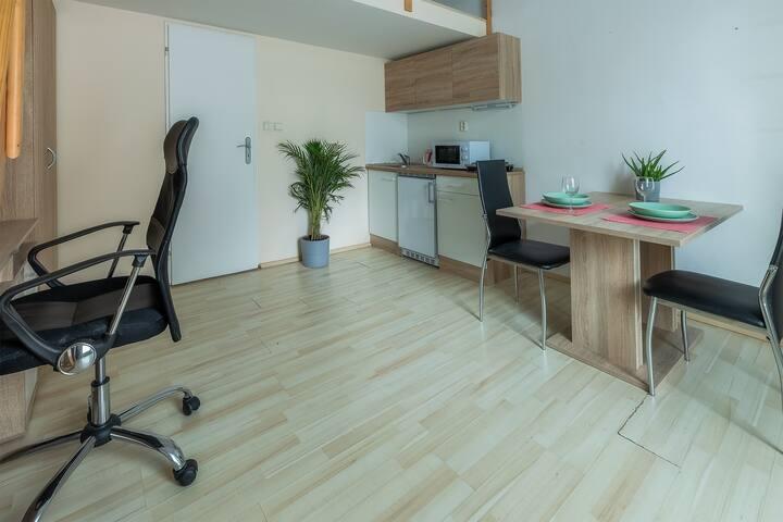 Apartmán pro 2 osoby v centru Brna - C102