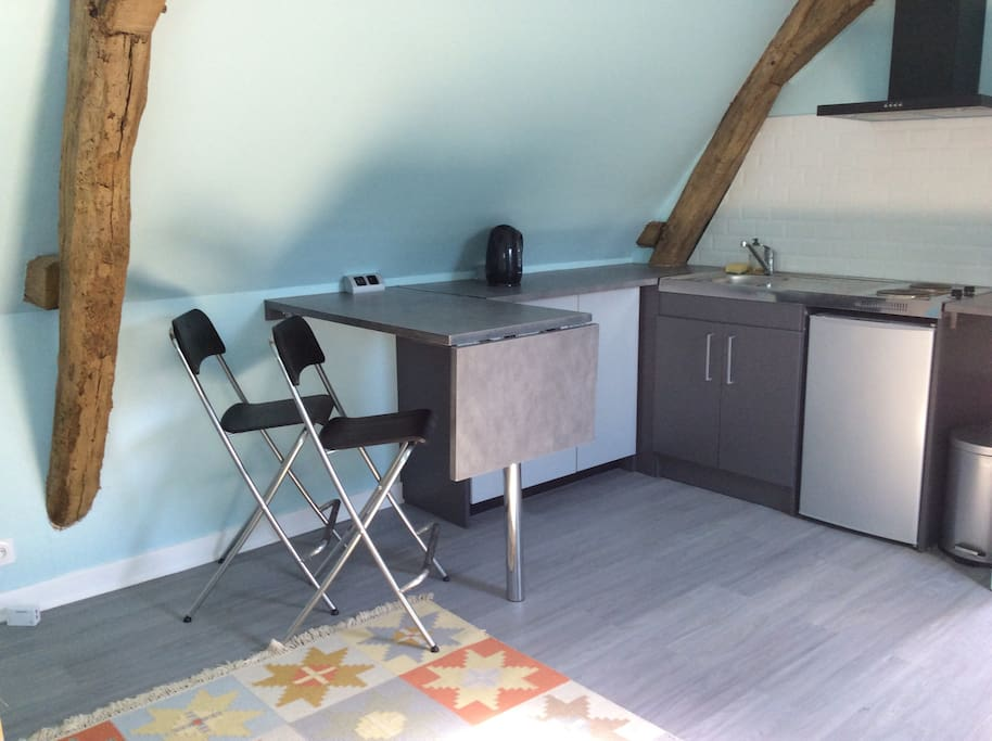 Kitchen area with microwave, electric hot rings, fridge, sink and breakfast bar.  Electric and charger sockets.