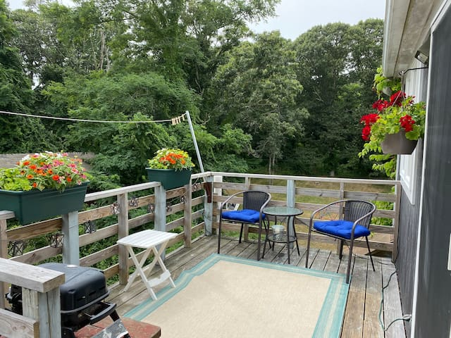 Sweet, secluded, dog-friendly upstairs apartment