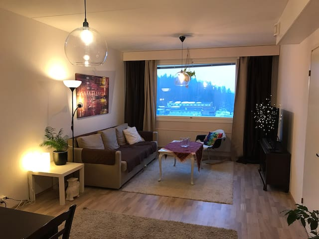 Spacious  flat for Max 8 people