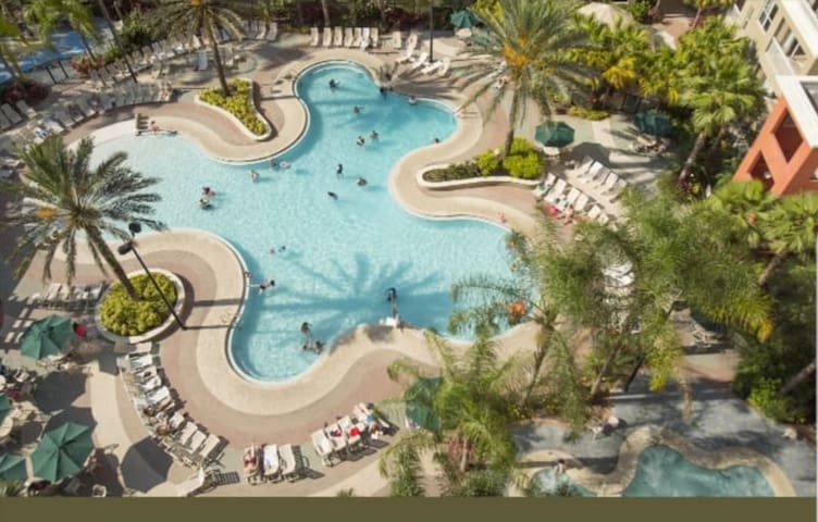 Resort with free shuttle for parks for 4 people.