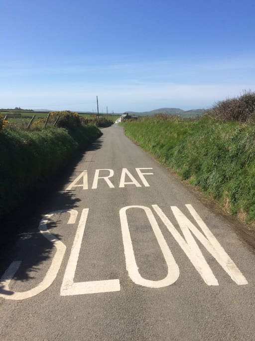 Thanks Gywnedd CC for the new road paint approaching our house!  hopefully people will listen...