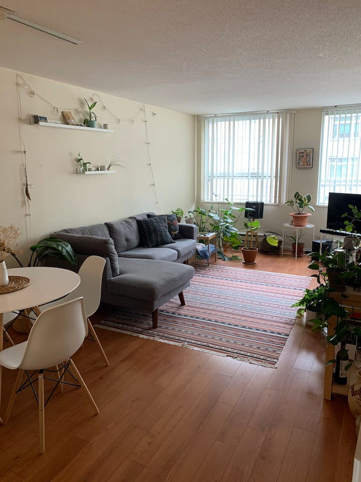 Small room in cozy DT Vancouver apartment!