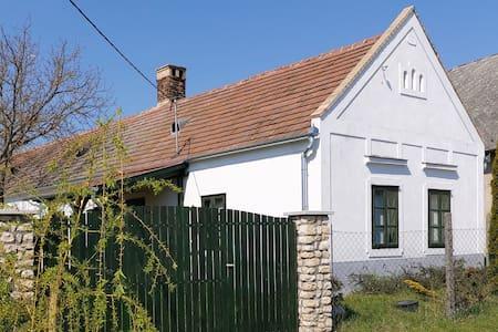 Authentic farmhouse (Söjtöry-Domonkos Ház)